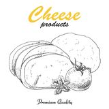 Vektorhintergrund mit Käse Stockbild
