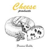 Vektorhintergrund mit Käse Stockfotografie