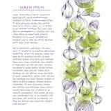 Vektorhintergrund mit quadratischer Schablone der Zwiebeln für Social Media mit Gemüse und Text lizenzfreie stockfotografie