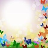 Vektorhintergrund mit Schmetterlingen und Gras Stockfotografie