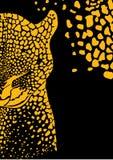 Vektorhintergrund mit wildem Leoparden Stockfotos