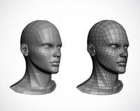Kvinnliga huvud. Vektor Arkivbild