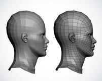 Det kvinnliga huvudet profilerar in. Vektor Arkivfoton