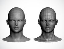 Kvinnliga huvud. Vektorillustration Arkivbilder