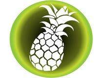 Vektorikone der weißen Ananas mit Hintergrund in der Art tropische Illustration der grünen Abstufungen von den Strandferien stockfotos