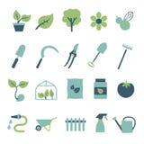Vektorikone eingestellt für die Schaffung des infographics bezogen auf der Gartenarbeit und den Zimmerpflanzen, einschließlich Bl lizenzfreie abbildung
