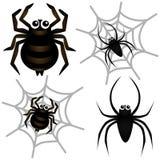 Vektorikonen: Spinne u. Spinnen-Web Stockbilder