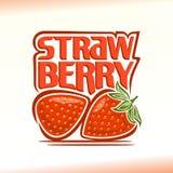 Vektorillustration auf dem Thema der Erdbeere Lizenzfreies Stockfoto