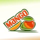 Vektorillustration auf dem Thema der Mango Lizenzfreie Stockfotografie