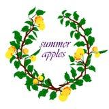 Vektorillustration av äpplen och sidor stock illustrationer