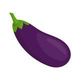 Vektorillustration av aubergine Arkivfoto