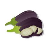 Vektorillustration av aubergine som isoleras på vit bakgrund Royaltyfria Foton