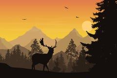 Vektorillustration av berglandskapet med skog och hjortar u Royaltyfria Bilder