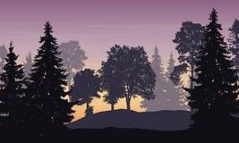Vektorillustration av berglandskapet med skogen Royaltyfria Foton