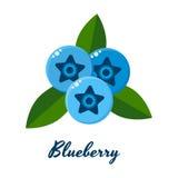 Vektorillustration av blåbär, blåa bär med grön leav Arkivbilder