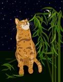 Vektorillustration av den Abyssinia katten som hem äter växten, humor stock illustrationer