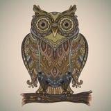 Vektorillustration av den härliga dekorativa ugglan med mycket de Royaltyfri Fotografi