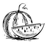 Vektorillustration av den mogna vattenmelon Royaltyfri Fotografi