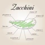 Vektorillustration av den närande listan för zucchini Fotografering för Bildbyråer