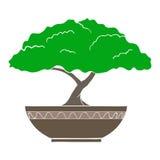Vektorillustration av det färgrika bonsaiträdet Royaltyfria Bilder
