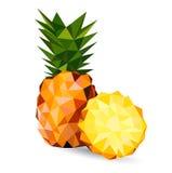 Vektorillustration av en ananas Arkivbilder