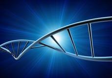 Vektorillustration av en DNAmodell royaltyfri illustrationer