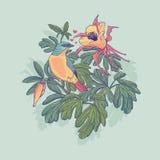 Vektorillustration av en fågel och blommor Royaltyfria Foton