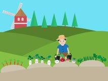 Vektorillustration av en pojke som bevattnar grönsaken royaltyfri illustrationer