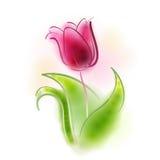 Vektorillustration av en tulpan Royaltyfri Foto