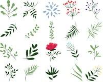 Vektorillustration av en växt på en vit bakgrund stock illustrationer