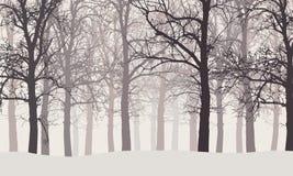 Vektorillustration av en vinterskog utan sidor med disigt stock illustrationer