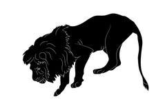 Vektorillustration av ett lejon, som står, konturvektor royaltyfri illustrationer
