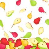Vektorillustration av fallande päron Det gula röda och gröna modellpäronet bär frukt aptitretande se för hel skiva grupp Royaltyfri Fotografi