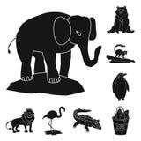 Vektorillustration av fauna- och underh?llningsymbolet Samling av faunor och att parkera materielvektorillustrationen royaltyfri illustrationer