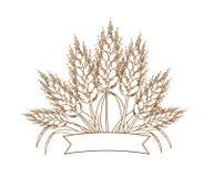 Vektorillustration av guld- mogna veteöron Symbols-, logo- eller designbeståndsdel Arkivfoto
