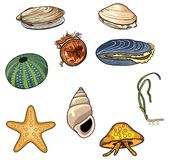 Vektorillustration av havet creatures-4 stock illustrationer