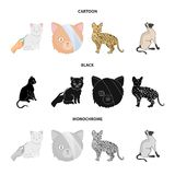 Vektorillustration av husdjur- och sphynxsymbolen St?ll in av husdjur och illustration f?r gyckelmaterielvektor royaltyfri illustrationer