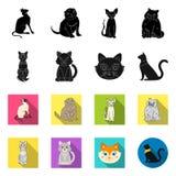 Vektorillustration av husdjur- och sphynxsymbolet St?ll in av husdjur och den roliga vektorsymbolen f?r materiel stock illustrationer