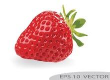 Vektorillustration av jordgubben över en vit bakgrund royaltyfri fotografi