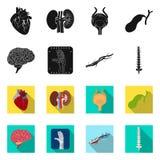 Vektorillustration av kropp- och människalogoen Uppsättning av kropp- och läkarundersökningvektorsymbolen för materiel vektor illustrationer