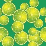 Vektorillustration av limefruktskivor på grön bakgrund i olika vinklar modell Arkivfoton