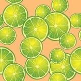 Vektorillustration av limefruktskivor på orange bakgrund i olika vinklar modell Arkivfoto