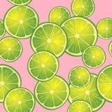 Vektorillustration av limefruktskivor på rosa bakgrund i olika vinklar modell Arkivfoton