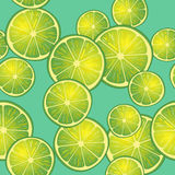 Vektorillustration av limefruktskivor på turkosbakgrund i olika vinklar modell Royaltyfria Bilder