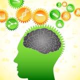 Tänkande människahjärna Arkivbild