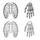 Vektorillustration av medicin- och kliniksymbolet St?ll in av medicin och illustration f?r l?karunders?kningmaterielvektor stock illustrationer