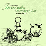 Vektorillustration av nödvändig olja av pimentaracemosaen Royaltyfri Fotografi