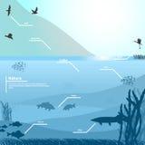 Vektorillustration av naturen på en blå bakgrund Fotografering för Bildbyråer