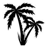 Vektorillustration av palmträd. Arkivfoton