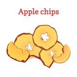 Vektorillustration av äpplen torkade frukter Skivaäpplechiper, bakat läckert som isoleras på vit bakgrund Royaltyfri Foto